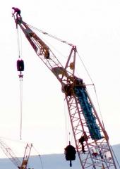 crane high contrastred.jpg